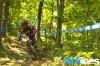leov-woods.jpg