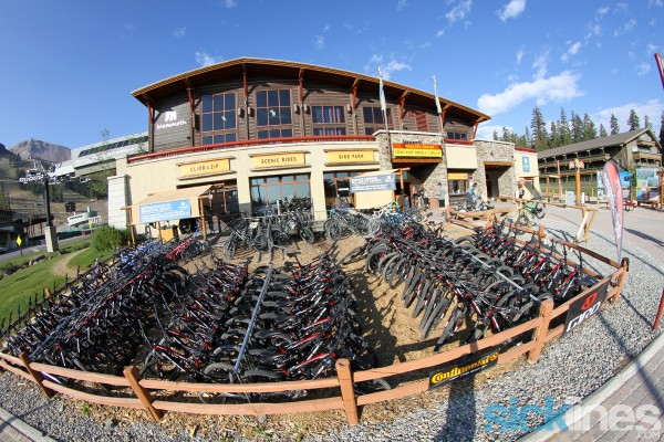 Mammoth Mountain CA - Bike rentals