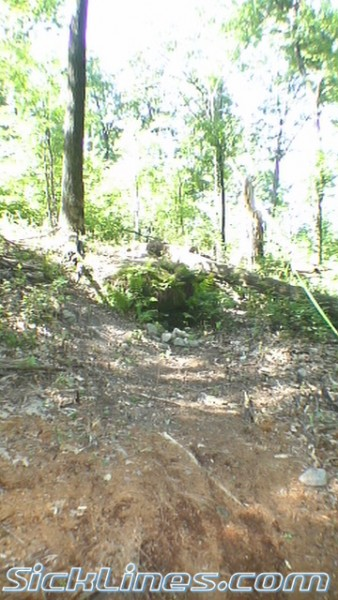 Mohican Wilderness Course