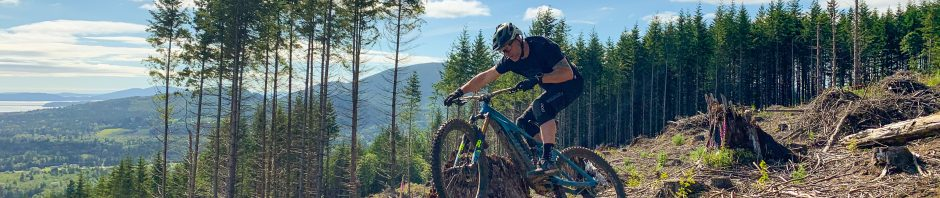 , Long Term Review – BMC Trailfox AMP SX